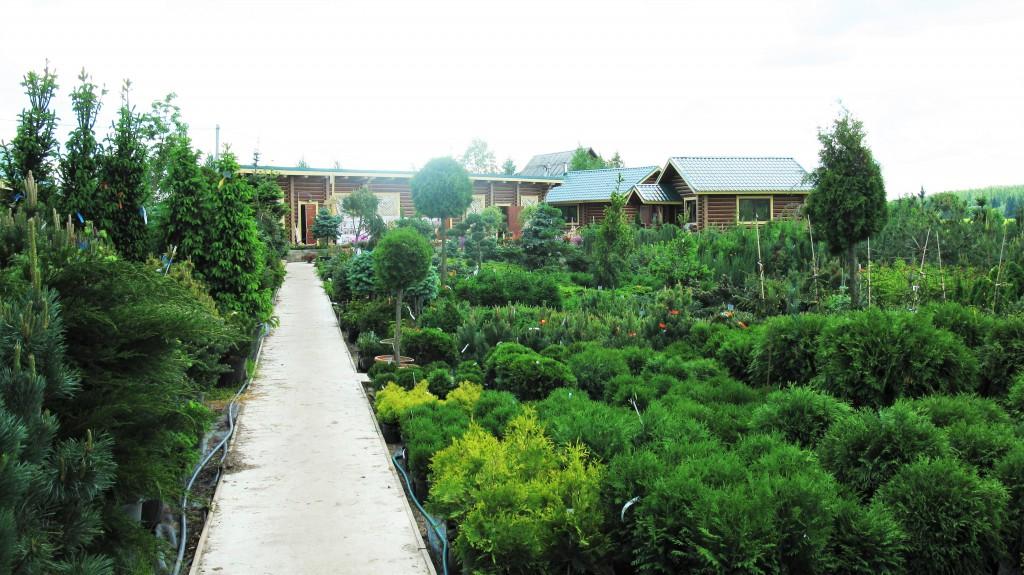 садовый центр 2
