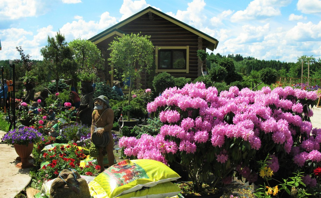 садовый центр 3